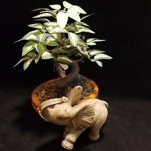 Large tusk, Elephant figurine